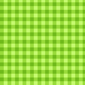 Green check pattern