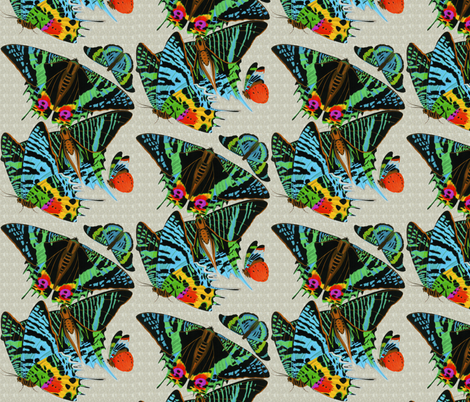 bugs 2 fabric by craftyscientists on Spoonflower - custom fabric