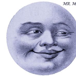 MR. MOON PILLOW