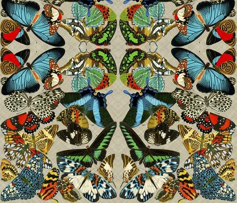Rbutterflies2_shop_preview