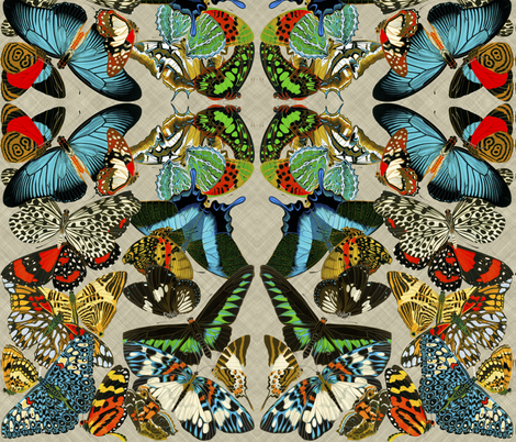 butterflies2 fabric by craftyscientists on Spoonflower - custom fabric