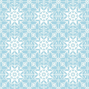 Medieval_lace_-_iced-01