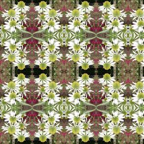 white flowers mirror image2