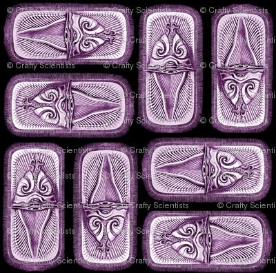 brachiopoda purple