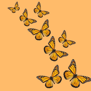 The Butterflies are Back!