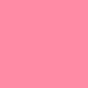 Solid Flamingo Pink hex code FF8BA5