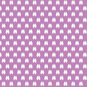 butterfly polka-ch-ch