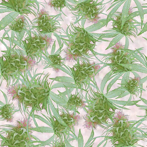 Cannabis Pink Bud (2) fabric by camomoto on Spoonflower - custom fabric