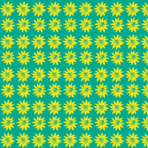 daffodil yellow with aqua background-ch