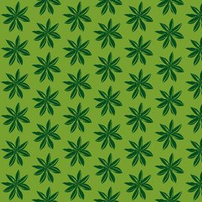 Romulea dark green -ch