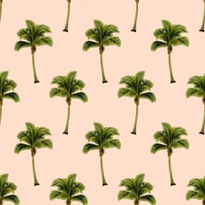 Palm Tree on Soft Peach