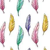 Drawing colorful feathers