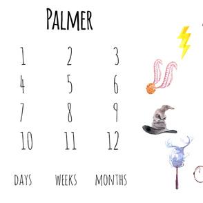 Wizard Symbols Baby Milestone Blanket