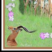 Impala_scarf_brown_shop_thumb