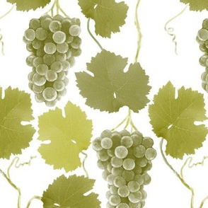 grapes-olive-1800
