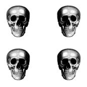 4 skulls on a yard#2