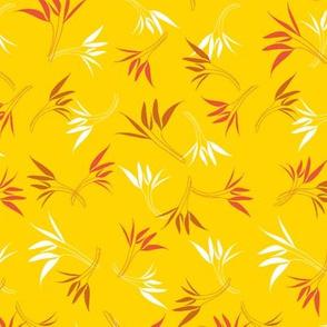 Hyacinthe 8