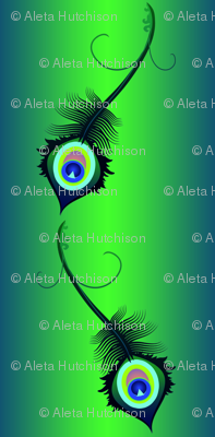 peacock_feather8