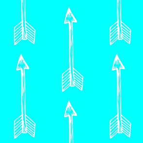 Shooting Arrows Bright Aqua