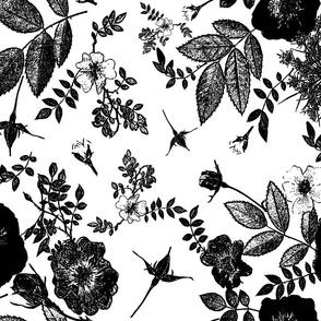 black rose vine silhouette