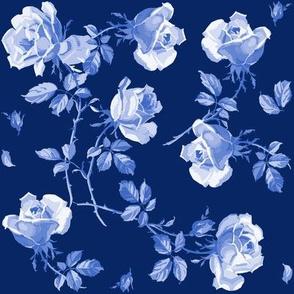 Hampton Roses in ink