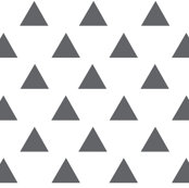 Black_triangles_shop_thumb