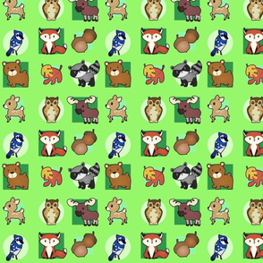 Woodland Critters Fabric
