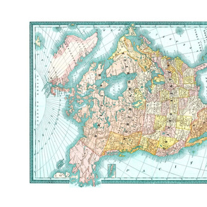 North_America_Vintage_Map_Tea_Towel_Fat_Quarter_Roostery