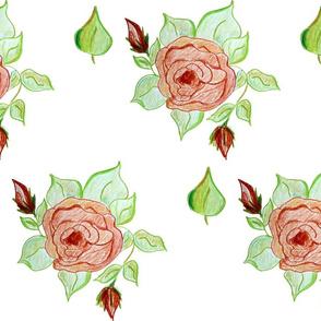 Majestic Beauty Rose Scatter