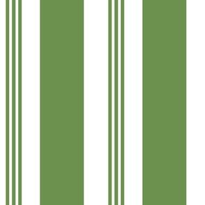 Chair Stripe Green