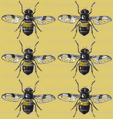 Bees for Galen