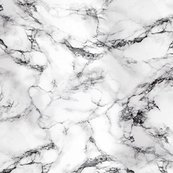 Rmarble_texture_in_black_and_white_shop_thumb