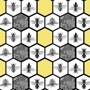 HoneyComb & Honey Bees, Beehive, Black & Yellow Hexagon