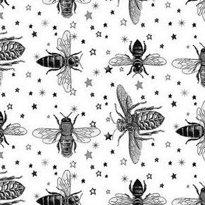 Black and White Honey Bees on Greyscale Stars, Vintage Insect Drawings