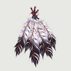 Indain_feathers