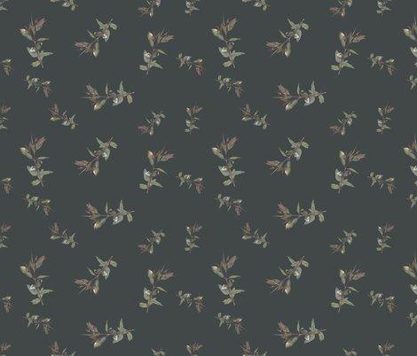 Reucalyptus_ficifolia_foliage_spaced_on__424747_shop_preview