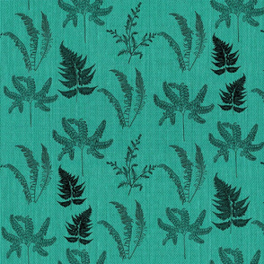 Ferns on teal
