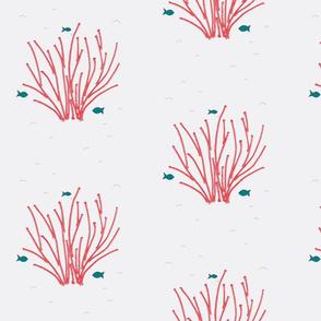 Fiber coral!