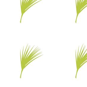 Palmetto :: Lemongrass