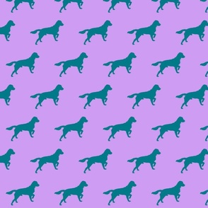 pink_and_blue_dog