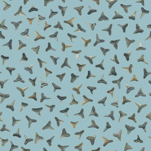 shark teeth on greyed teal