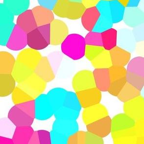 Summer's Confetti