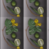 Botanical Lime wall paper
