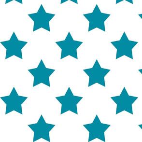 dark teal star on white