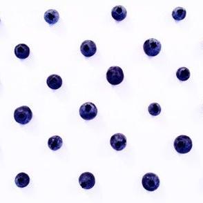 Bluest Berry Dots