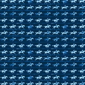 Muybridge Gallop (indigo)