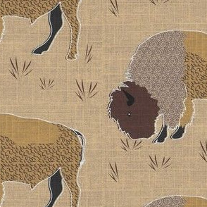 Bison with swirly coat