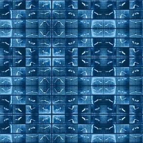 Muybridge Soar (indigo)