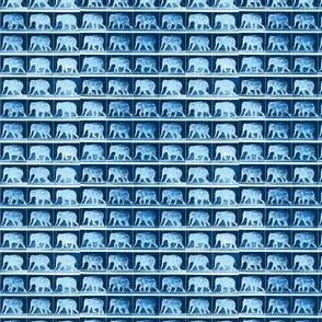 Muybridge Tromp (indigo)