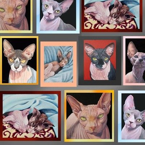 My Sphynx Paintings Collage